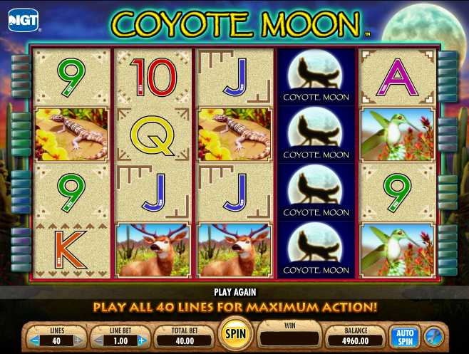 Mr. Green Casino :: Coyote Moon slot game - PLAY NOW!