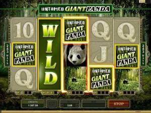 Casino La Vida :: Untamed - Giant Panda slot game :: Collect-A-Wild Feature