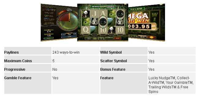 Casino La Vida :: Untamed - Giant Panda :: Basic Game Information