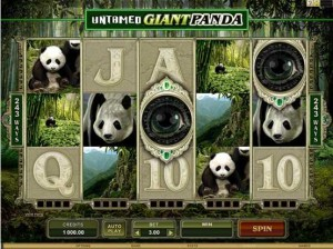 Roxy Palace Casino :: Untamed - Giant Panda video slot - PLAY NOW!
