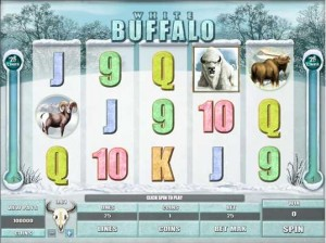 Red Flush Casino :: White Buffalo video slot - PLAY NOW!