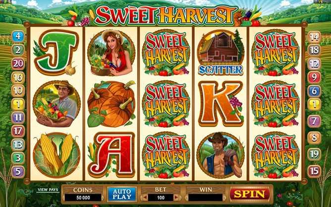 Casino LaVida :: Sweet Harvest video slot - PLAY NOW!